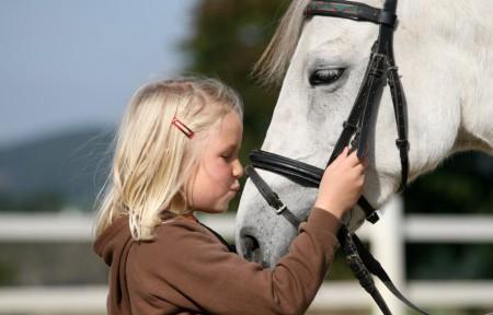 Foto Pony