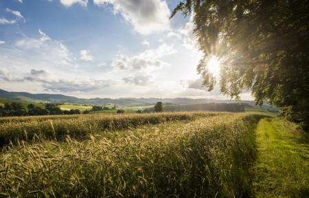 Landschaftsfoto Wormbach