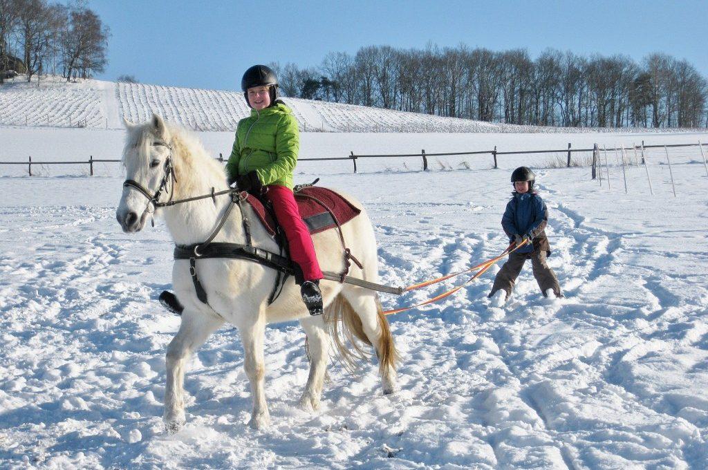 Foto Skijöring