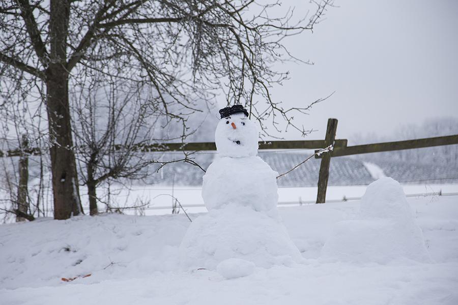 Schneemann auf dem Hardthof